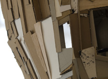 Cardboard Cocoons